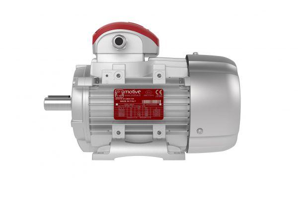 Электродвигатели DELFIRE 3-х фазные 100 оС